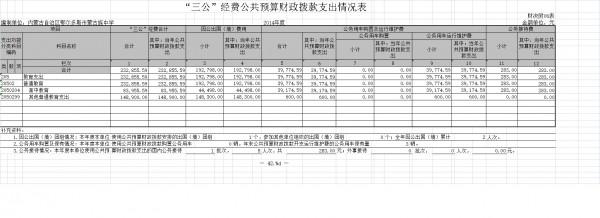 """""""三公""""经费公共预算财政拨款支出情况表"""