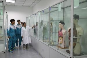 生物标本室(四层)