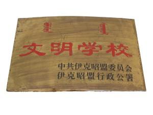 xuexiaorongyu-17